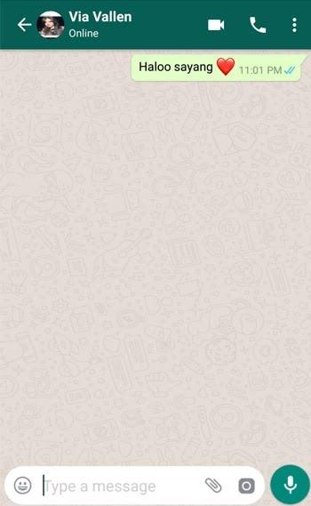 Contoh Pesan Palsu WhatsApp